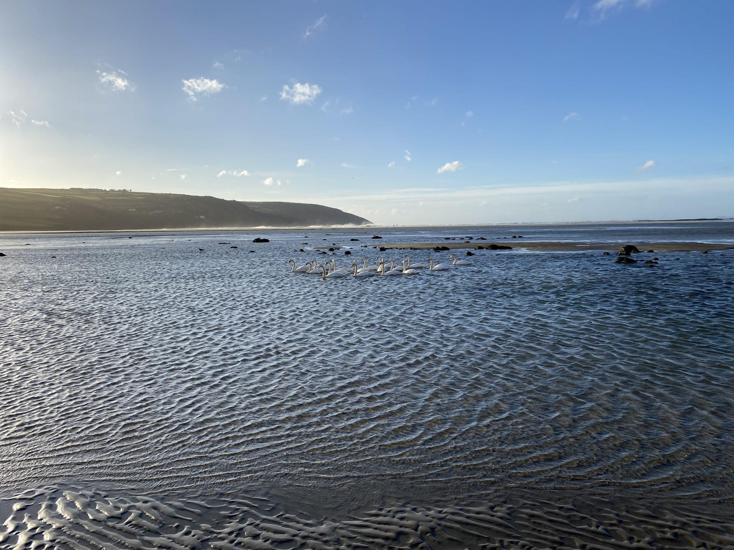 Gwbert Estuary