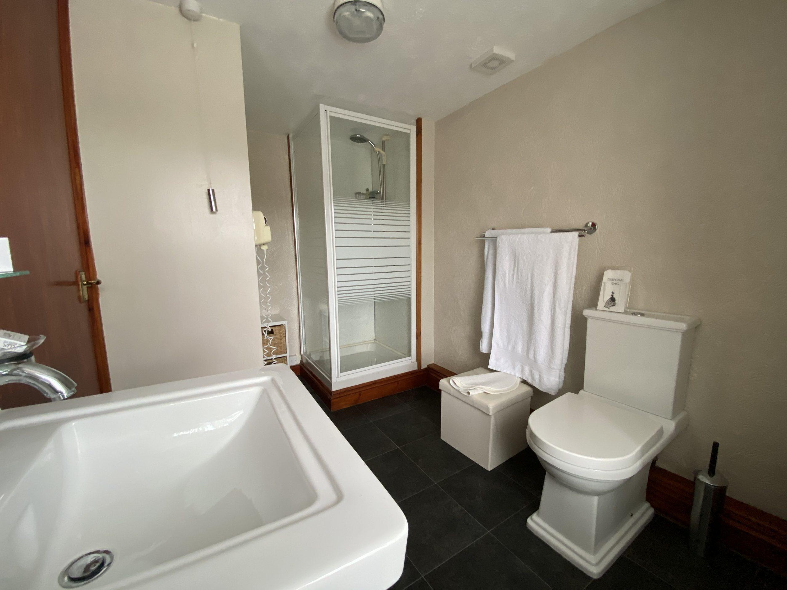 Room 2 shower room