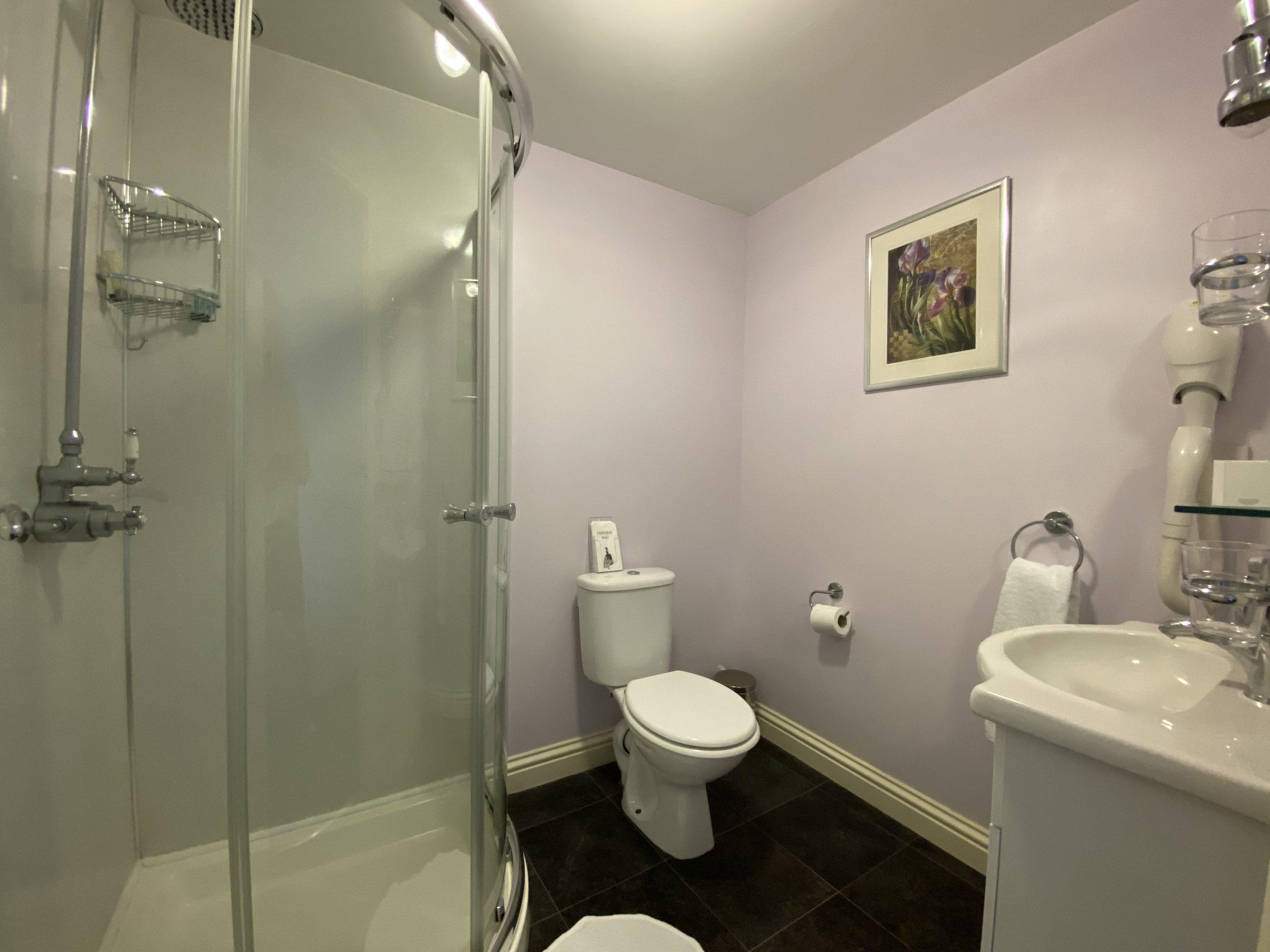 Room 6 shower room